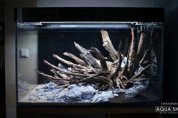 Akwarium Bociania front